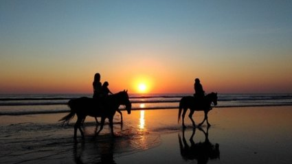 2 Riders on horseback on beach