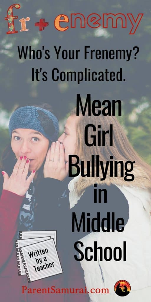 Mean Girl Bullying in Middle school pin